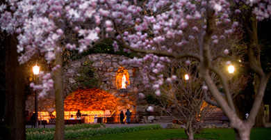 grotto_spring_dusk